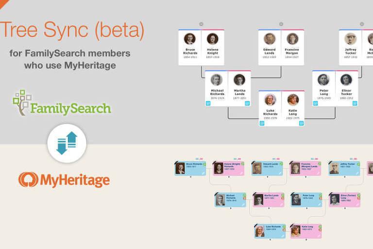 Página do site MyHeritage, especializado em construção de árvores genealógicas e comércio de testes de DNA