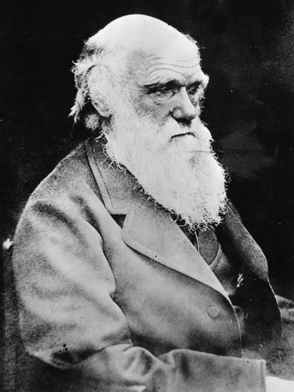 O cientista britânico Charles Robert Darwin, naturalista que formulou a teoria da evolução e seleção natural das espécies, posa para foto