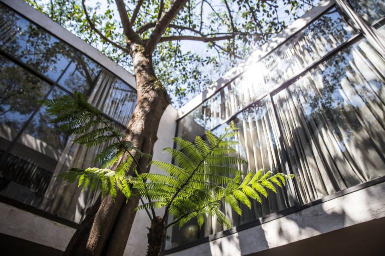 Casa de Vidro, projetada por Lina Bo Bardi