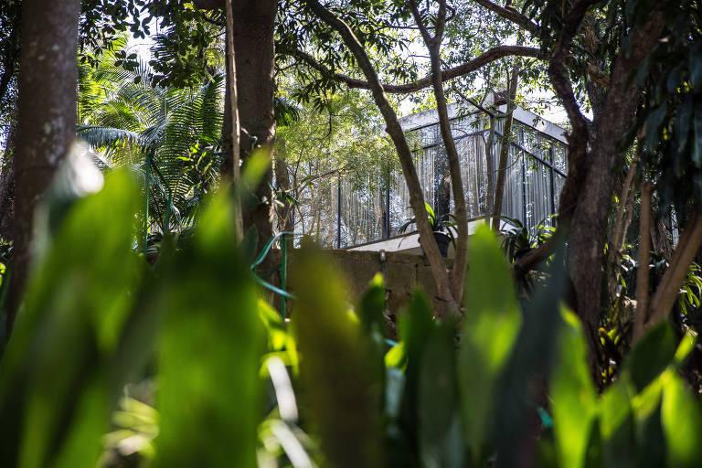 Vista do jardim e da Casa de Vidro, da arquiteta Lina Bo Bardi, no Morumbi