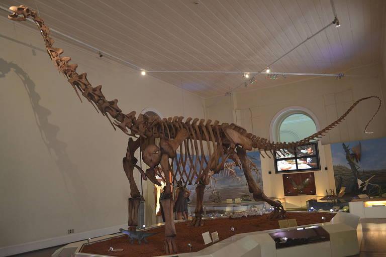 Esqueleto reconstituído do dinossauro Maxakalisaurus topai em exposição no Museu Nacional, Rio de Janeiro.