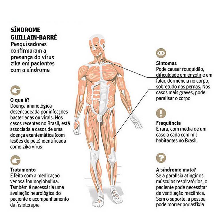 Segundo a OMS, a síndrome de Guillain-Barré aumentou em cinco países latinos após uma epidemia do vírus da zika