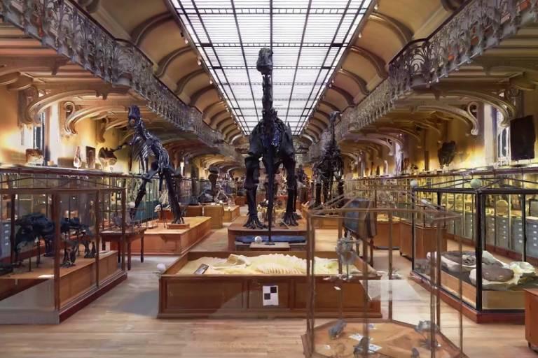 Interior do Museu Nacional de História Natural da França