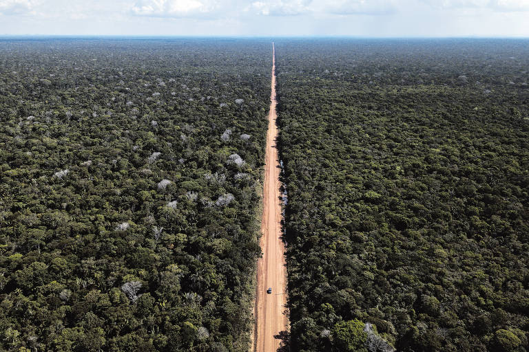 Repaving this stretch of BR-319 can have serious environmental impacts on the rainforest