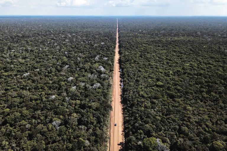 Estrada em meio a Amazônia