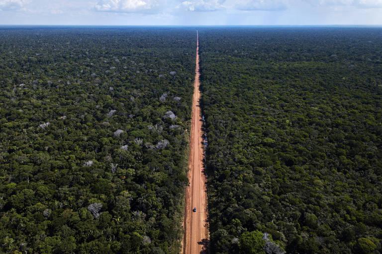Floresta verde cortada por estrada de terra vista do alto com céu azul ao fundo