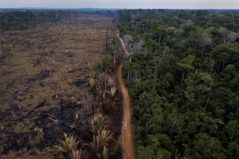 Área desmatada na APA Rio Pardo, no limite com a Floresta Nacional Bom Futuro