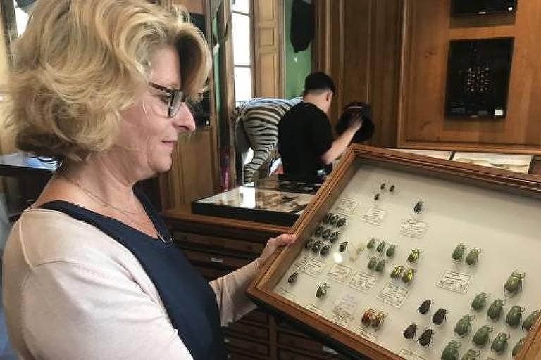 Entomologista Valérie Breillat exibe parte da coleção da qual é responsável