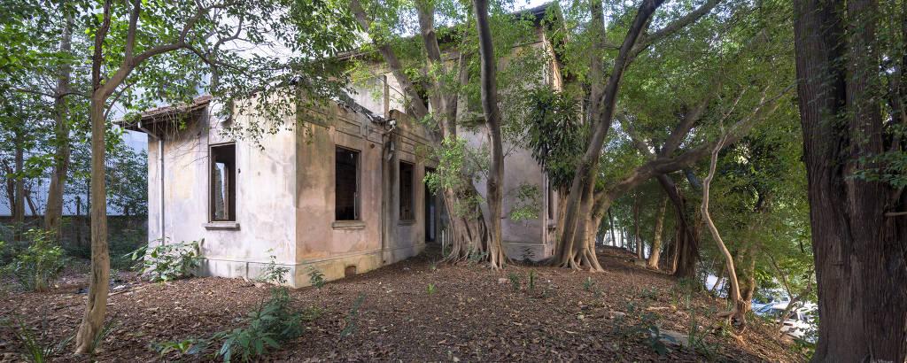 casa tombada em meio a árvores
