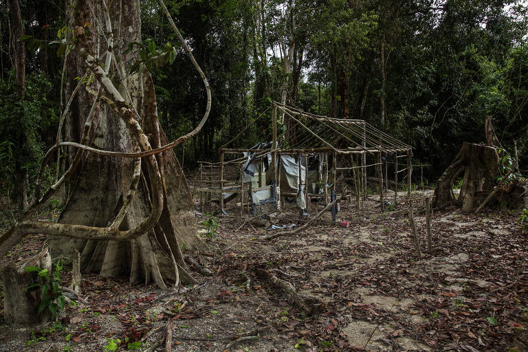 Acampamento de garimpo abandonado no rio Rato
