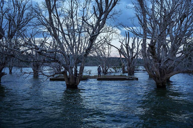 O ribeirinho Leonardo Batista , 59, visita o que restou de em uma ilha do rio Xingu que foi inundada