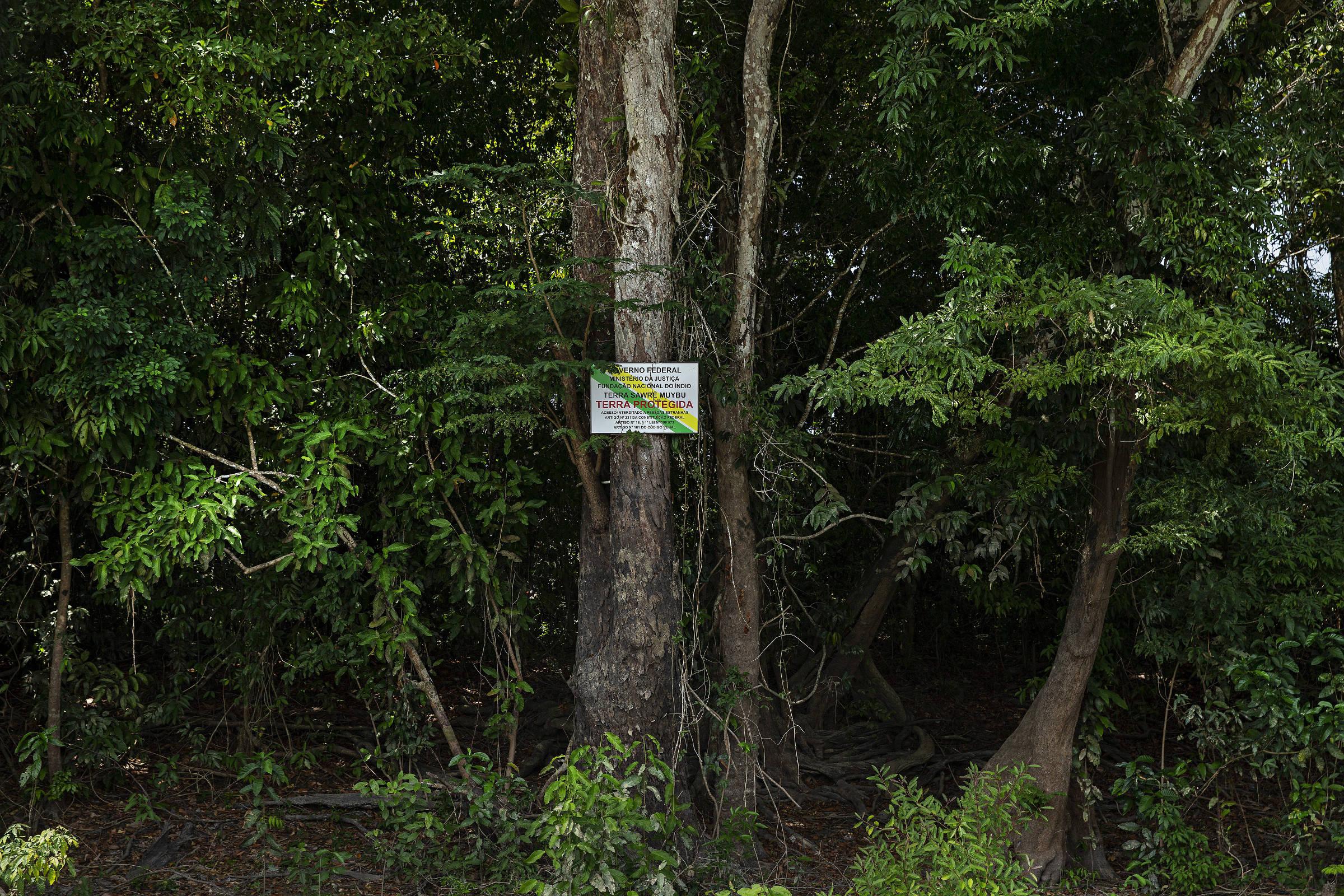 Placa de auto demarcação da terra indígena Sawré Muybu dos índios mundurucus