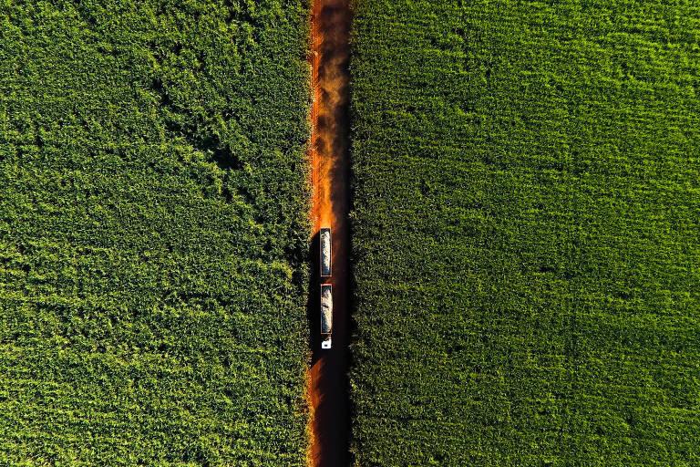 Imagem aérea mostra caminhão trafegando em estrada de terra em meio a lavouras de cana