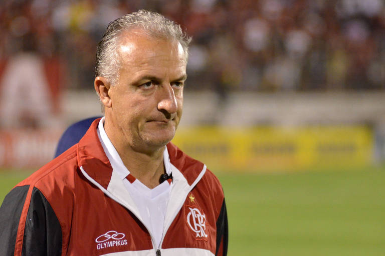 Dorival Júnior trabalhou no Flamengo entre 2012 e 2013