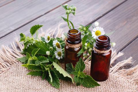 Os óleos essenciais podem tratar dores e sintomas como ansiedade e insônia