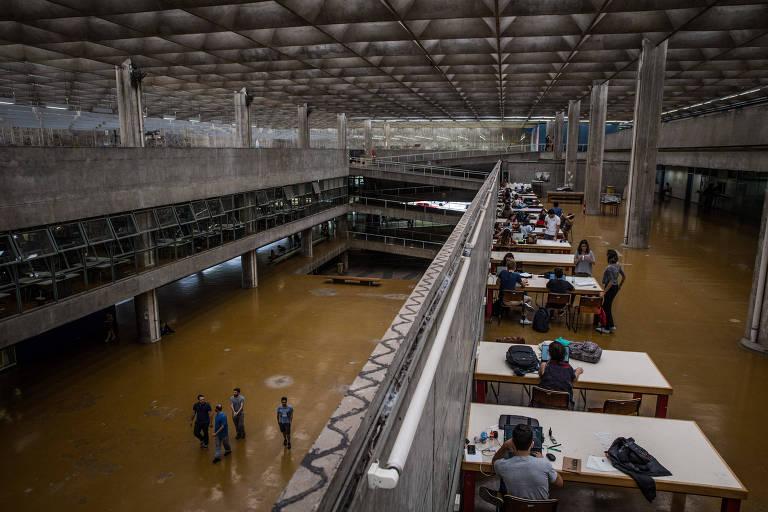 A Universidade de São Paulo (USP)