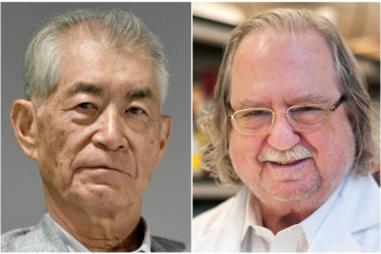 Os ganhadores do Nobel de medicina, Tasuku Honjo, (esq.), e James P. Allison (à dir.)