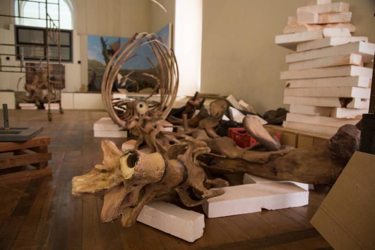 Um mês após incêndio em museu, buscas por artefatos ainda não começaram