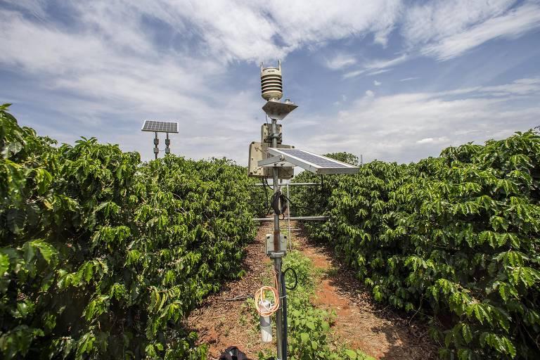 Torres de transmissão em fazenda de Jaguariúna