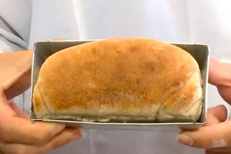 Pesquisadoras dizem que as baratas podem ser usadas para produzir outros alimentos