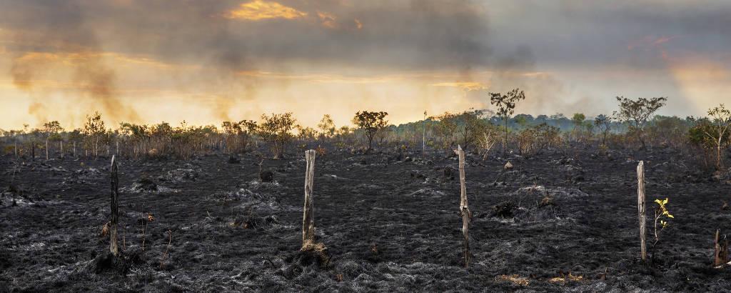 Área de pasto queimado no entroncamento da BR-319 com a Rodovia Transamazônica, a região com maior taxa de desmatamento do estado