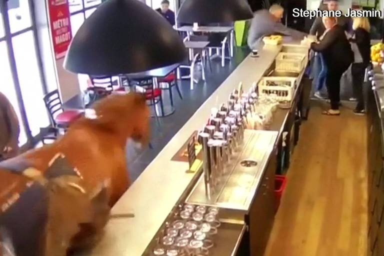 Nas imagens, é possível ver os clientes em pânico enquanto o cavalo tenta se livrar de sua cela