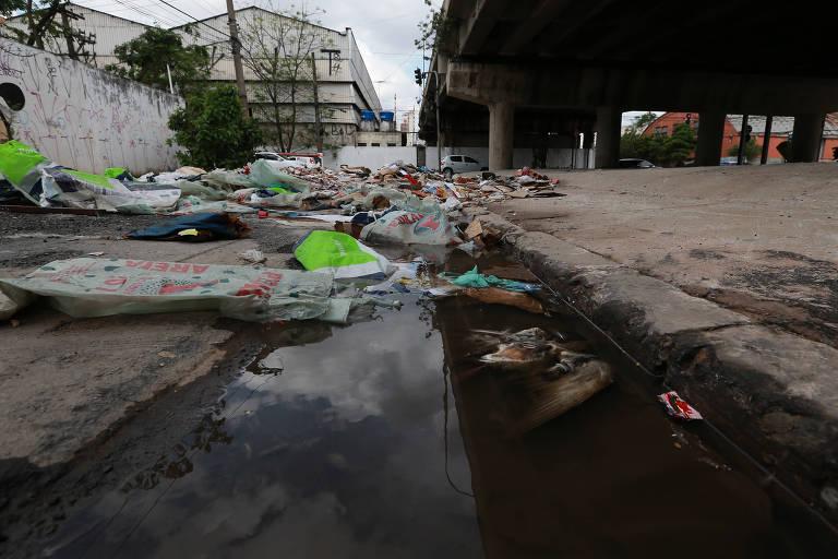 Moradores e comerciantes reclamam que água acumulada vira foco do mosquito da Dengue em rua de SP