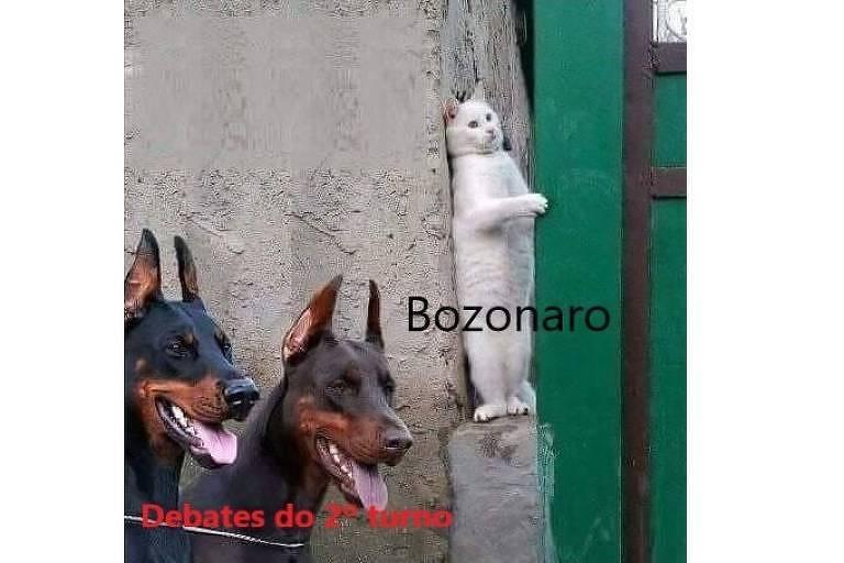 Meme ironiza ausência de Bolsonaro em debates