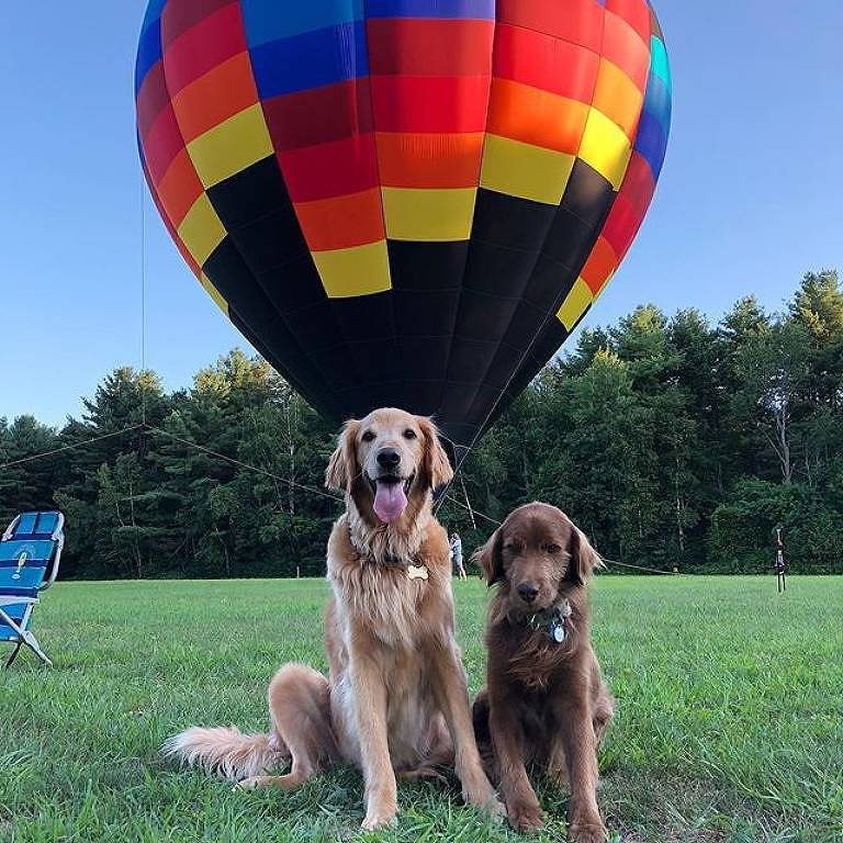 Finn e Yogi ao lado de balão de ar