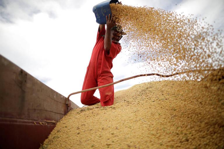 Carregamento de soja em Campos Lindos (TO)