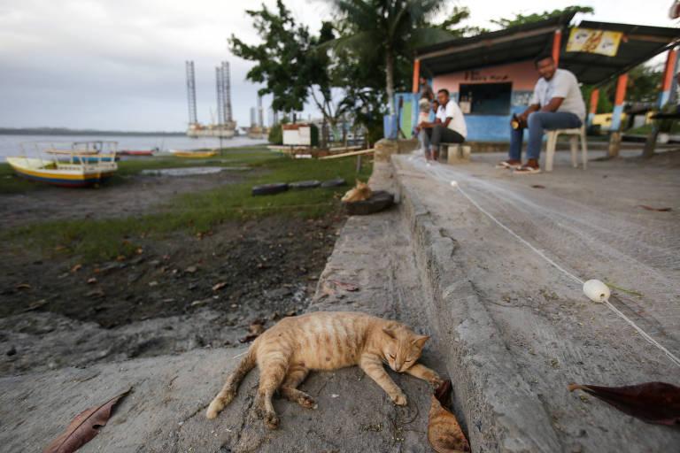 Homens conversam no distrito de São Roque do Paraguaçu, no município de Maragojipe, no recôncavo baiano