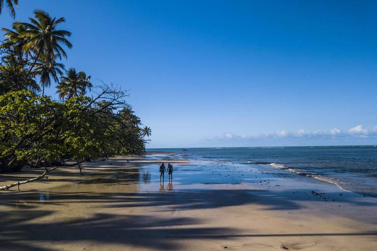 Turista caminha na praia da Cueira, na ilha de Boipeba. Extensa, tem mar calmo de águas cristalinas acompanhado por fileiras de coqueiros a perder de vista.