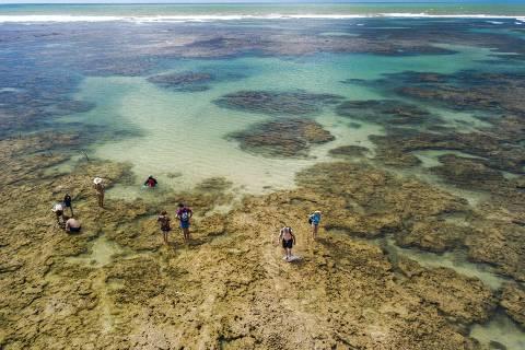 CAIRU - BA - 02.09.2018 - Turistas na Quarta praia no Morro de São Paulo, município de Cairu na Bahia. (Foto Danilo Verpa, TURISMO)