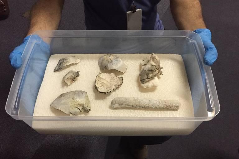 Partes do crânio e o fêmur de Luzia, o esqueleto humano mais antigo descoberto na América que revolucionou as teorias científicas sobre a ocupação do continente