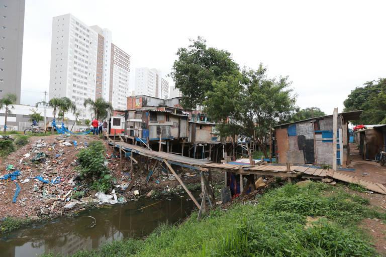 Vida a beira de córrego em São Paulo