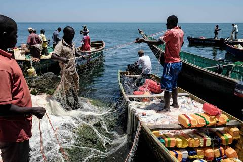 A picture taken on October 5, 2018, shows fishermen preparing their nets on Migingo island which is densely populated by residents fishing mainly for Nile perch in Lake Victoria on the border of Uganda and Kenya. - A rounded rocky outcrop covered in metallic shacks, Migingo Island rises out of the waters of Lake Victoria like an iron-plated turtle. The densely-populated island is barely a quarter of a hectare large, its residents crammed into a hodge-podge of corrugated-iron homes, with seemingly little but a few bars, brothels and a tiny port to boast of. (Photo by Yasuyoshi CHIBA / AFP)