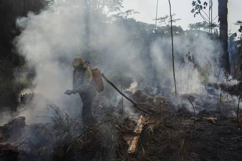 PORTO VELHO, RO. 14/08/2018. REDU'ÌO DE UNIDADES DE CONSERVA'ÌO - Brigadistas ind'genas do ICMBio tentam controlar incndio criminoso em ‡rea de reflorestamento na Floresta Nacional Bom Futuro em Rond™nia.  ( Foto: Lalo de Almeida/ Folhapress ) ESPECIAL AMAZïNIA ***EXCLUSIVO FOLHA***
