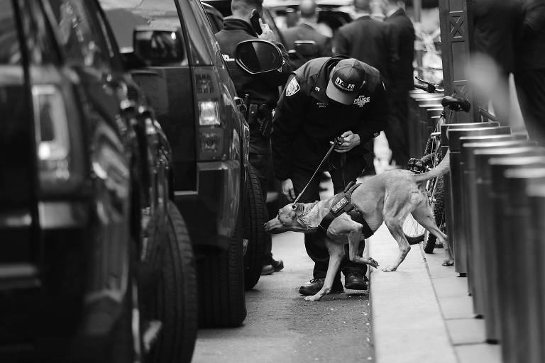 Cão farejador próximo ao prédio da Time Warner, dona da CNN, um dos alvos em Nova York