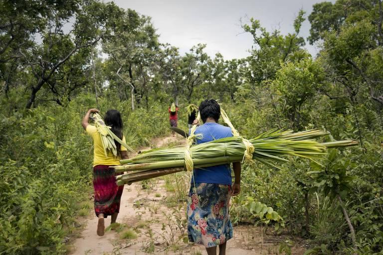 Índios Xavantes caminhando com folhas para fazer artesanato