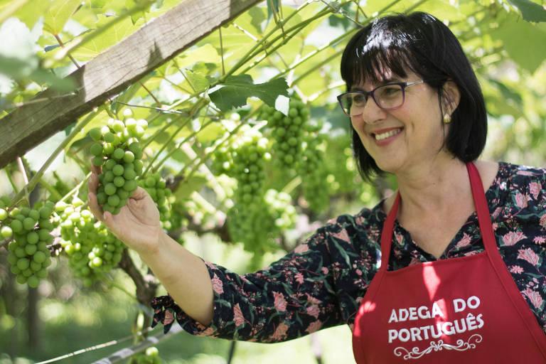 A Adega do Português, de Angela Moniz, integra a Rota da Uva, em Jundiaí