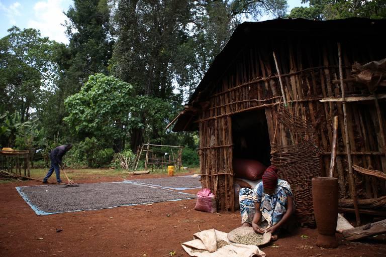 Café na Etiópia