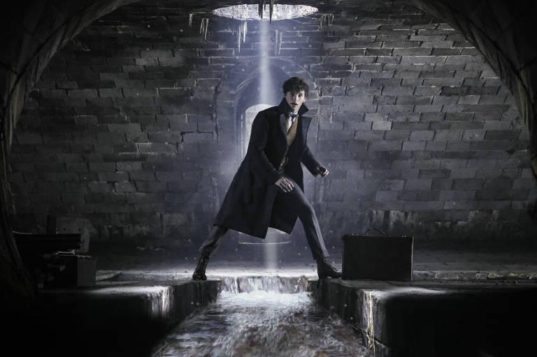 Para iniciados, 'Animais Fantásticos' chega perto do encanto de Harry Potter