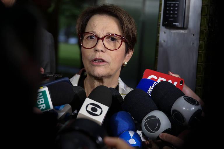 A futura ministra da Agricultura, Tereza Cristina (DEM-MS)