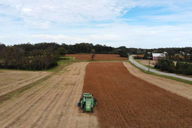 Colheita de soja em Maryland, EUA