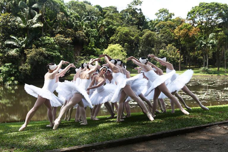 'O Lago dos Cisnes', da São Paulo Companhia de Dança