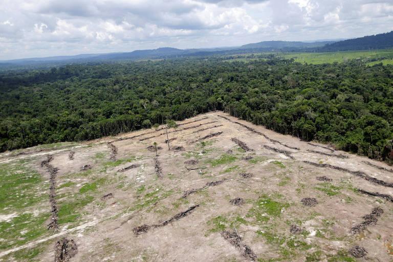 Área desmatada na cidade de Novo Progresso, no Pará
