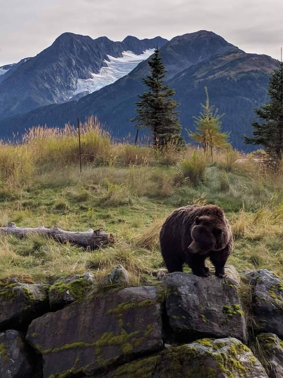 Natureza e atrações turísticas no Alasca