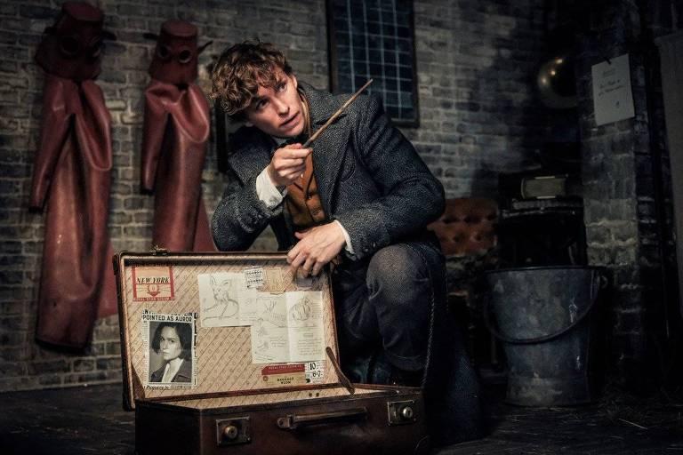 Saiba quais personagens de 'Harry Potter' retornam em novo 'Animais Fantásticos'