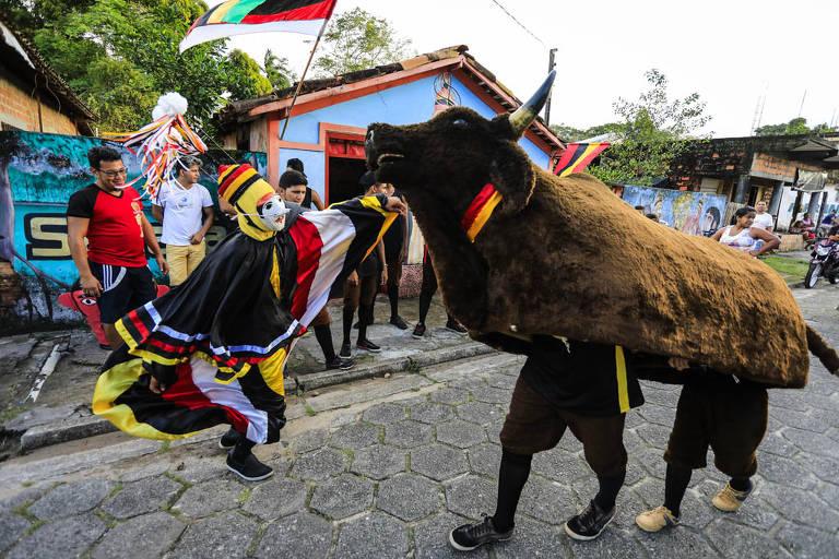 Festa do Boi de Máscaras, em São Caetano de Odivelas (PA)