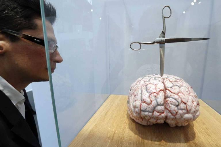 """Instalação artística de Jean Fabre intitulado """"Cérebro com estrela"""", em tradução livre; Há uma tesoura, com uma de suas pontas fincadas no cérebro"""